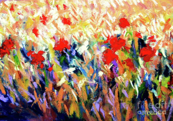 Wall Art - Painting - Poppies by John Clark