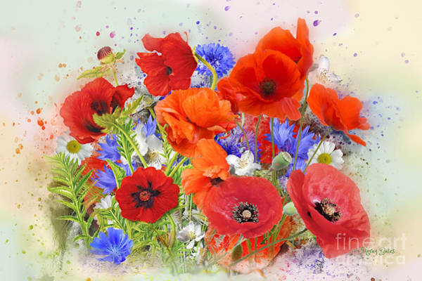 Digital Art - Poppies by Morag Bates