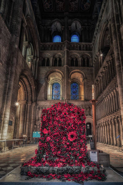 Poppy Display At Ely Cathedral Art Print