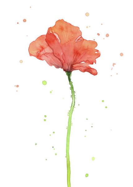Wall Art - Painting - Poppy Flower  by Olga Shvartsur
