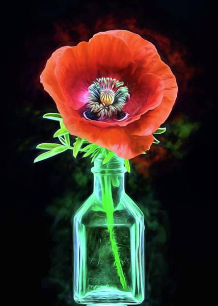 Poppies Digital Art - Poppy Flower Still Life by JC Findley