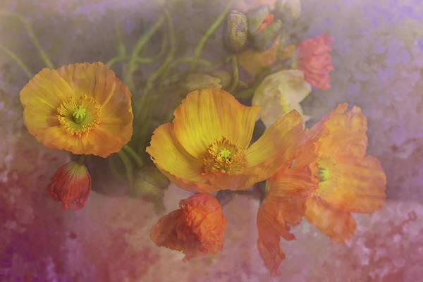 Fx Photograph - Poppy Love by Jeff Burgess