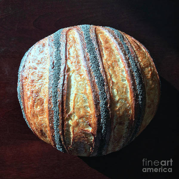Photograph -  Poppy Seed Striped Sourdough 1 by Amy E Fraser