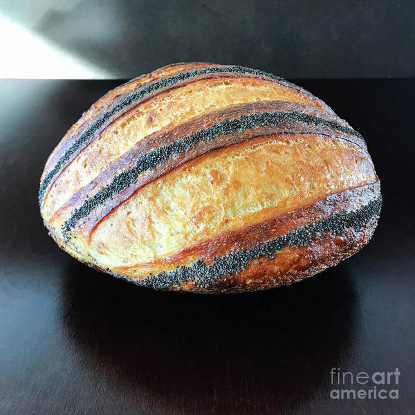 Photograph - Poppy Seed Striped Sourdough 2 by Amy E Fraser