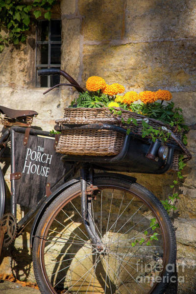 Photograph - Porch House Bicycle by Brian Jannsen