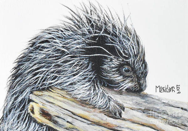 Painting - Porcupine Baby by Marilyn McNish