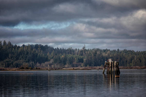 Photograph - Port Alberni by Randy Hall