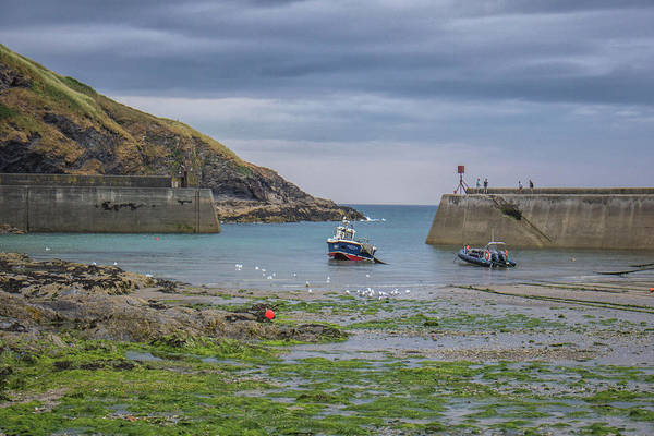 Wall Art - Photograph - Port Isaac Fishing by Martin Newman