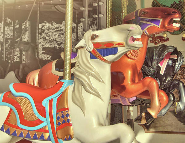Photograph - Portable Carousel by JAMART Photography