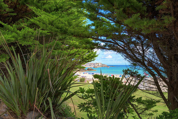 Photograph - Porthminster Behind The Trees - St Ives Cornwall by Eddy Kinol
