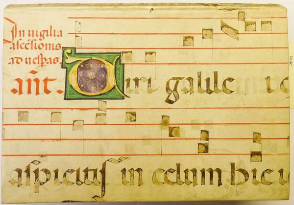 Wall Art - Painting - Portion Of A Parchme  by kladcat Portion of a parchment leaf from a liturgical ms