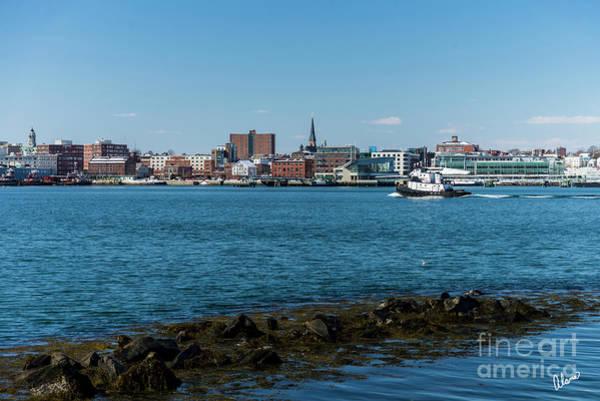 Photograph - Portland Maine by Alana Ranney
