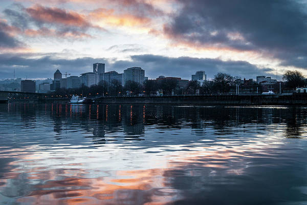 Photograph - Portland Skyline by Robert Potts