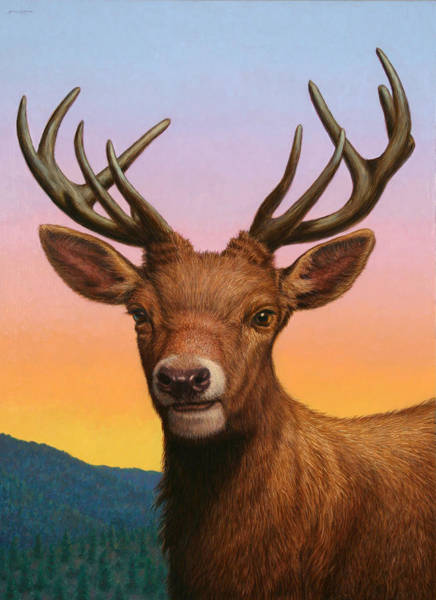 Antlers Painting - Portrait Of A Red Deer by James W Johnson
