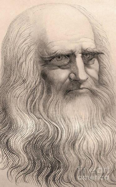 Dgt Wall Art - Drawing - Portrait Of Leonardo Da Vinci  by Italian School