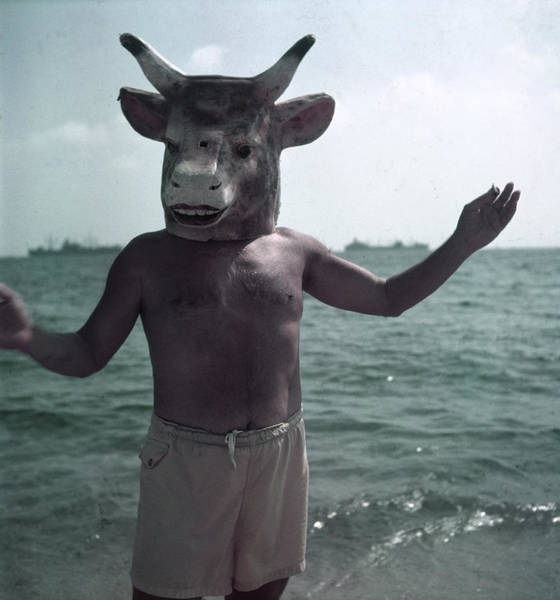 Wall Art - Photograph - Portrait Of Masked Picasson On The Beach by Gjon Mili
