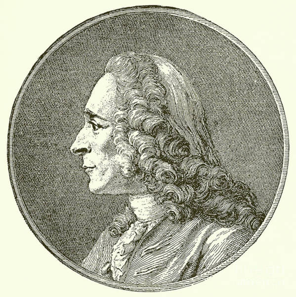 Wall Art - Drawing - Portrait Of The Writer Voltaire  by English School