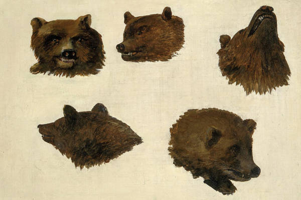 Wall Art - Painting - Portraits Of Two Grizzly Bears, From Life, 1840 by George Catlin