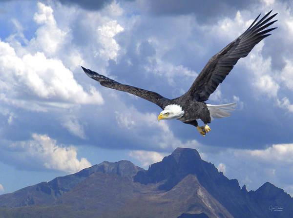 Digital Art - Majestic Bald Eagle by Judi Dressler