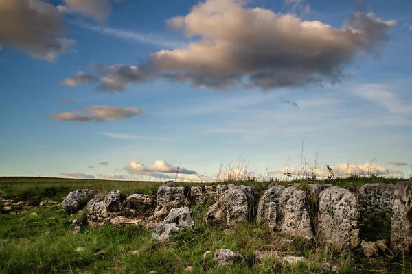 Photograph - Prairie Bones by Jeff Phillippi