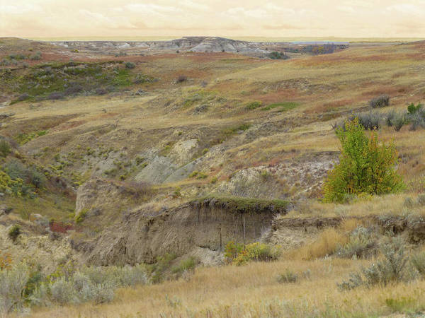 Photograph - Prairie Edge September Reverie by Cris Fulton
