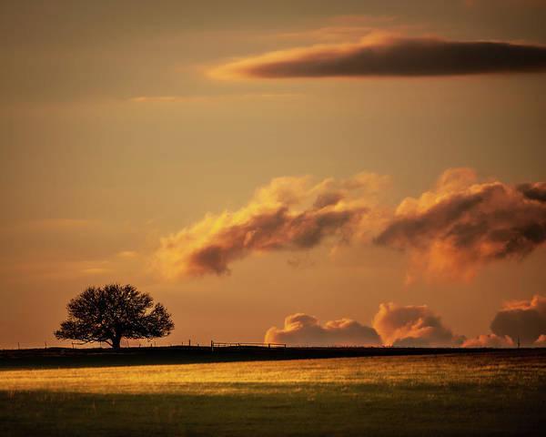 Photograph - Prairie Light by Jeff Phillippi