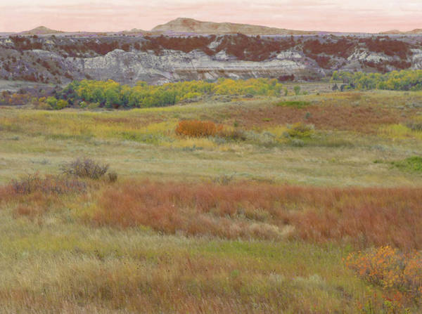 Photograph - Prairie Reverie On The Western Edge by Cris Fulton