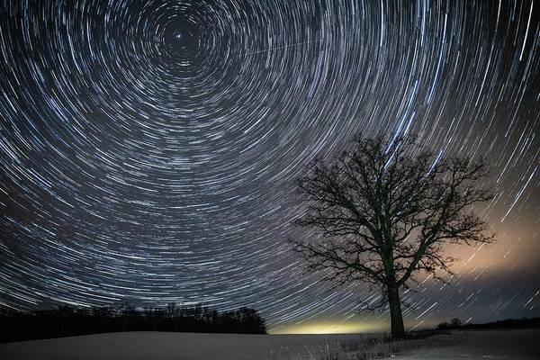 Photograph - Prairie Sentinel by Ian Johnson