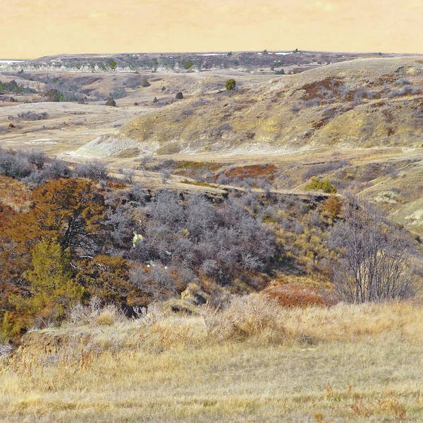Photograph - Prairie Slopes Reverie by Cris Fulton
