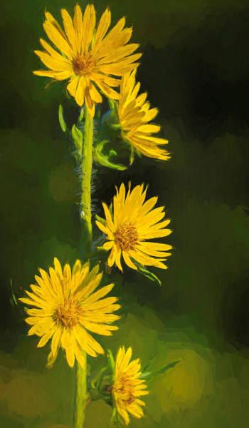 Painting - Prairie Sunflower Vertical by Dan Sproul