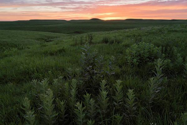 Photograph - Prairie Sunset by Scott Bean