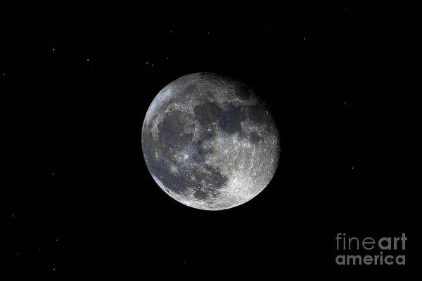 Photograph - Pre Blood Red Wolf Supermoon Eclipse 873a by Ricardos Creations