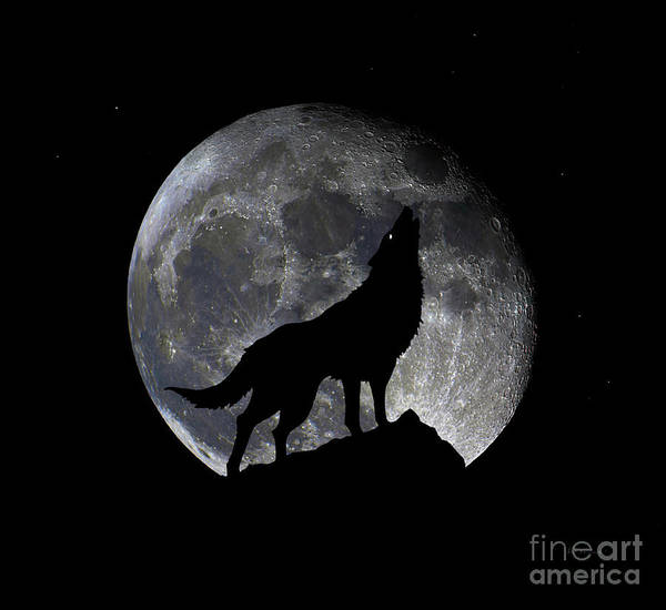 Digital Art - Pre Blood Red Wolf Supermoon Eclipse 873o by Ricardos Creations