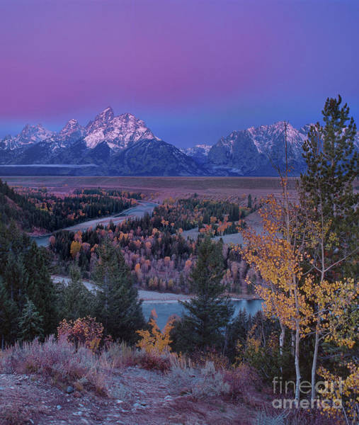 Photograph - Pre-dawn Fall Color Dawn Snake River Overlook Grand Tetons by Dave Welling