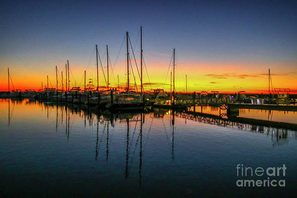 Photograph - Pre-dawn Marina Colors by Tom Claud