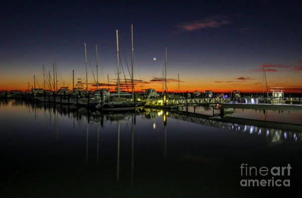Photograph - Pre-dawn Marina by Tom Claud