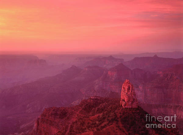 Photograph - Predawn Alpenglow Point Imperial Grand Canyon National Park by Dave Welling