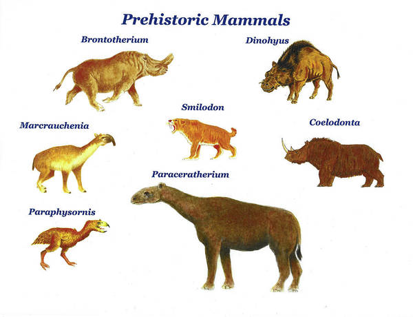 Wall Art - Painting - Prehistoric Mammals Montage by Michael Vigliotti