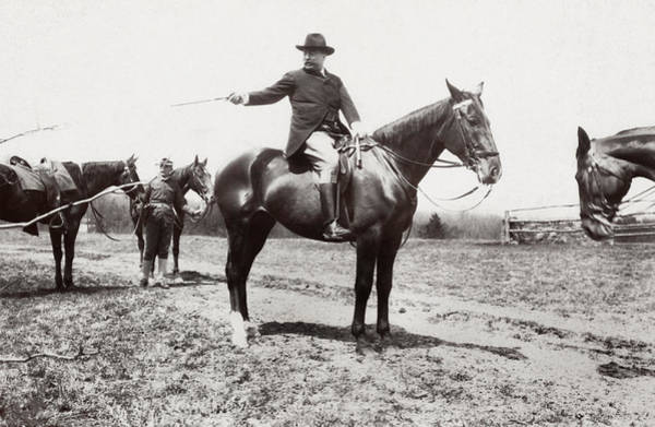 Steed Photograph - President Roosevelt Horseback Riding - 1907 by War Is Hell Store