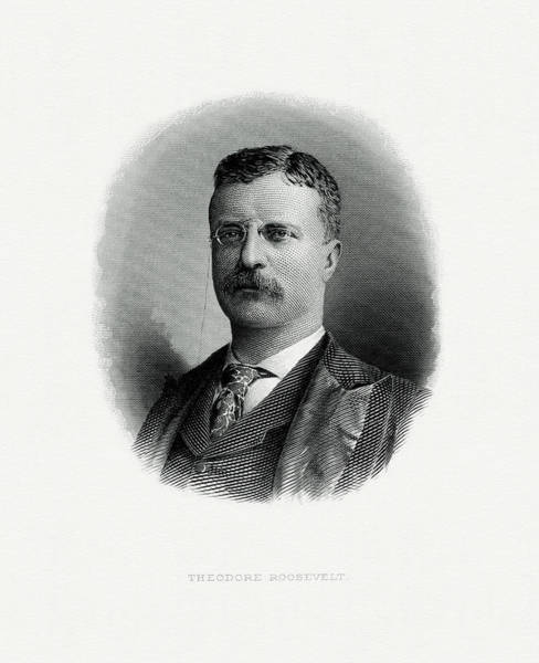 Vice Painting - President Theodore Roosevelt by The Bureau of Engraving and Printing