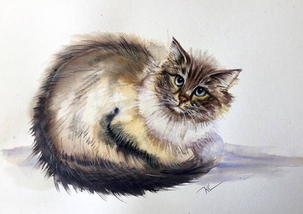 Painting - Pretty Cat by Katerina Kovatcheva