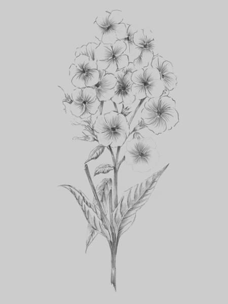 Love Mixed Media - Pretty Flower 3 by Naxart Studio