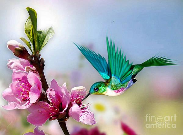 Mixed Media - Pretty Hummingbird by Morag Bates