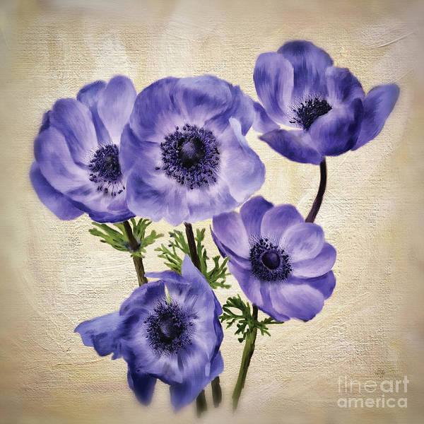 Digital Art - Pretty Periwinkle Poppies by Lois Bryan