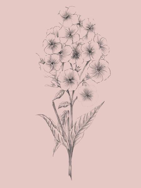 Wall Art - Mixed Media - Pretty Pink Flower 3 by Naxart Studio