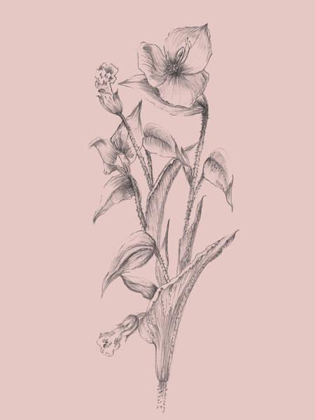 Wall Art - Mixed Media - Pretty Pink Flower I by Naxart Studio