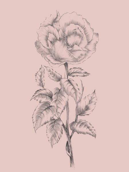 Wall Art - Mixed Media - Pretty Pink Flower  by Naxart Studio