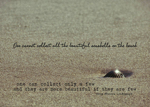 Photograph - Pretty Seashell Quote by JAMART Photography