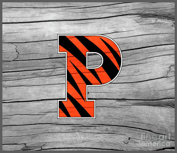 Wall Art - Photograph - Princeton University Tigers Logo On Rustic Wood by John Stephens