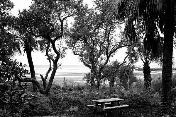 Wall Art - Photograph - Private View Sunset Coastal Grill In St. Joe Florida  by Toni Hopper